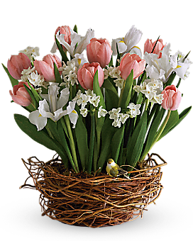 Tulip Song Basket Arrangement