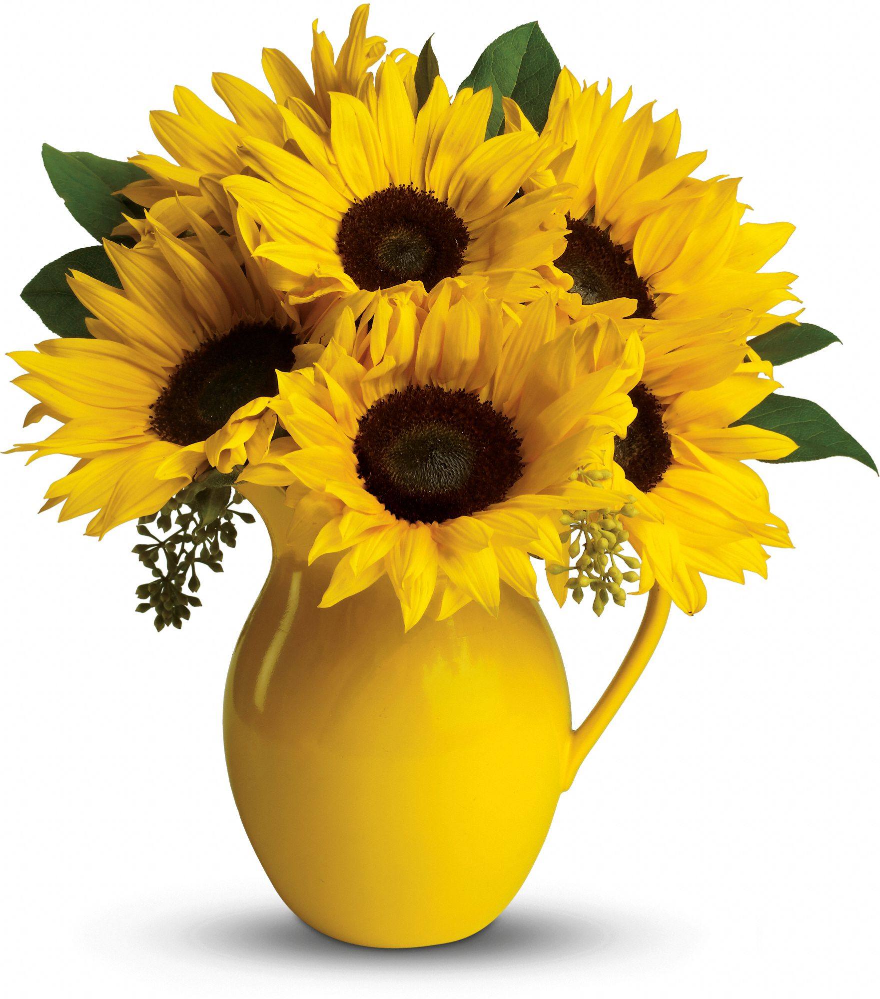 Sunny Day Bouquet of sunflowers in a ceramic pitcher