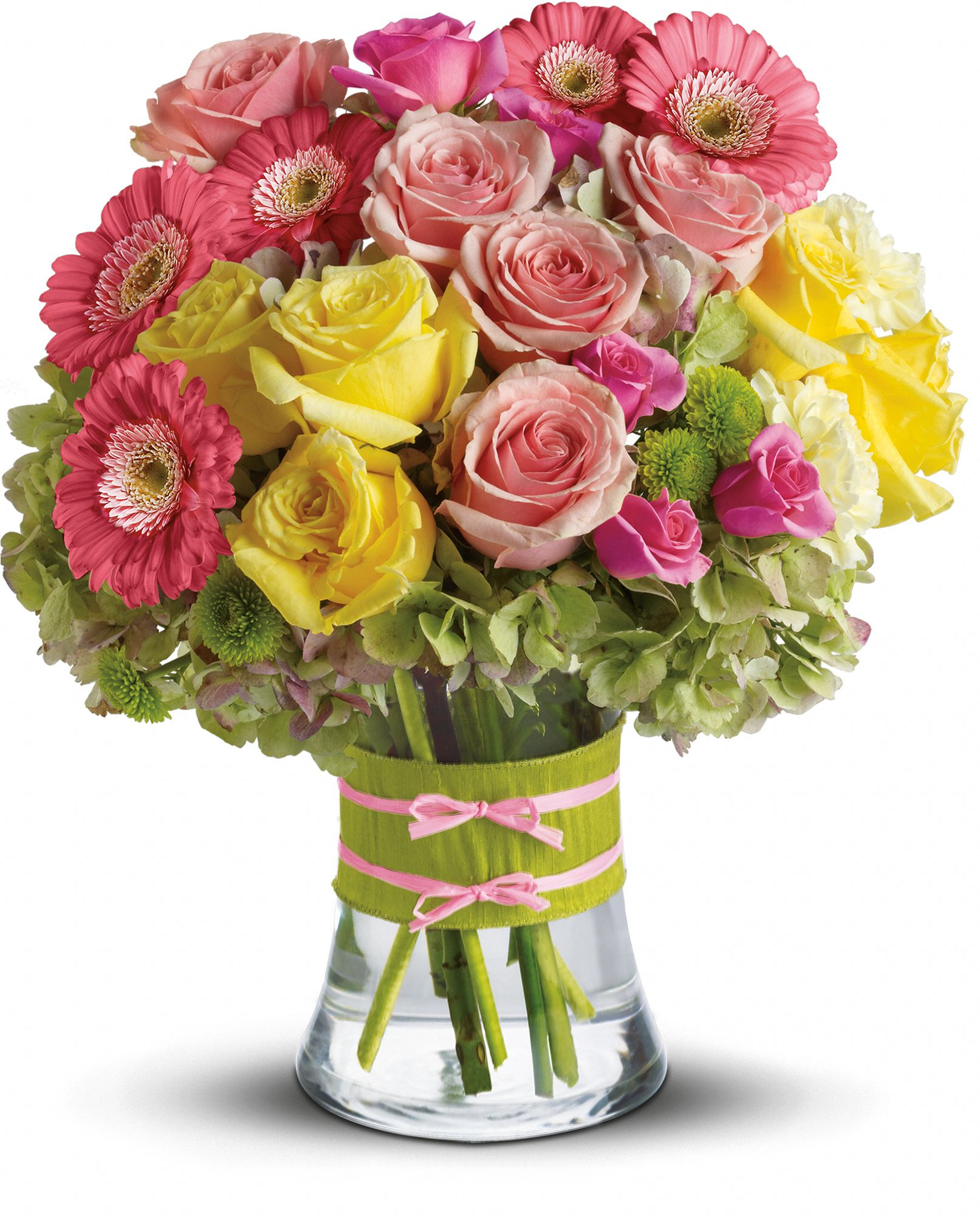 types of flowers with names and meanings. gerberas types of flowers with names and meanings n
