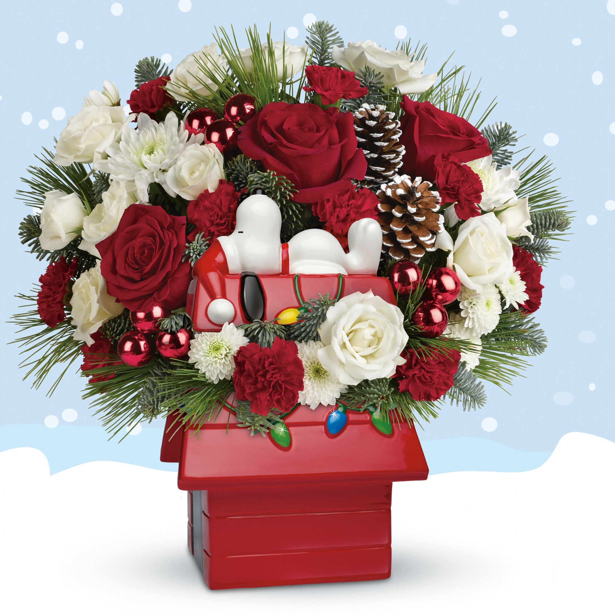 Snoopy's Cookie Jar Bouquet by Teleflora