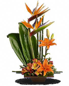 Arrangement floral Grâce exotique de Teleflora