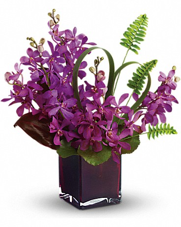 Teleflora's Island Princess - purple orchids with tropical leaves and ferns in a chic plum-colored glass cube.