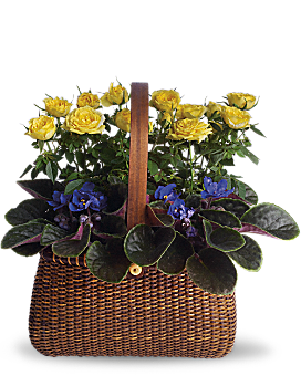 Garden To Go Basket Basket Arrangement