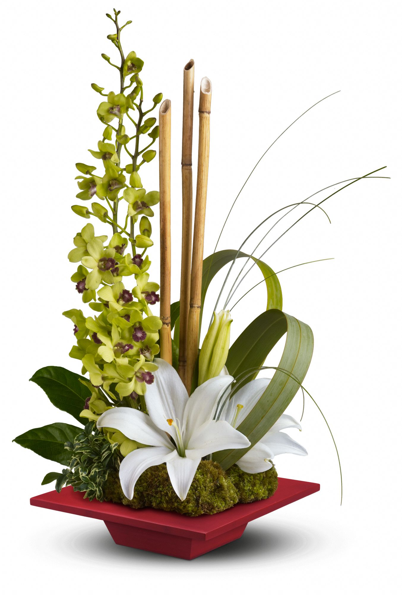 Secret Oasis tropical Bouquet