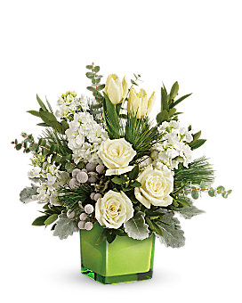 Teleflora's Winter Pop Bouquet Bouquet